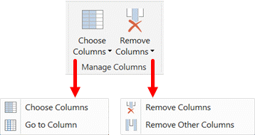 Manage Columns Section